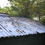 More shed roof project