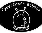 Robot Interview