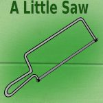 Interview with A Little Saw Author.
