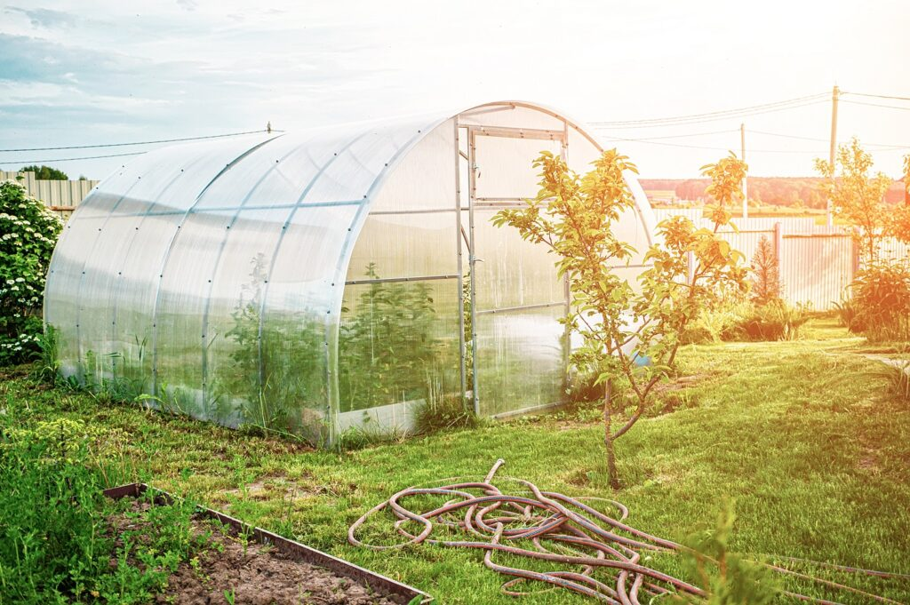 A tunnel shaped polycarbonate greenhouse on a sunny day in spring.